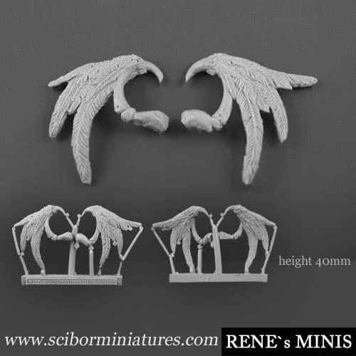 Angel Wings #1 (2) - фото 12376