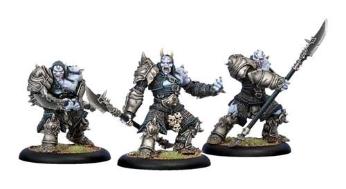 Legion of Everblight Warmonger Unit BOX* - фото 16782
