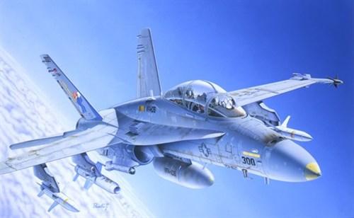 Самолет  F/A-18C/D WILD WEASEL (1:72) - фото 20931