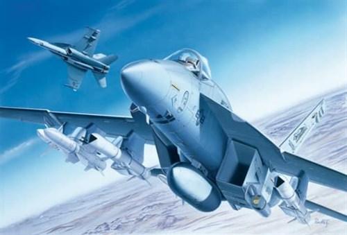 Самолет  F/A-18E  SUPER HORNET (1:72) - фото 20942