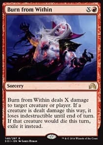 Burn from Within FOIL - фото 30046
