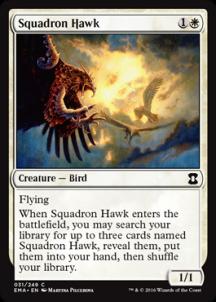 Squadron Hawk - фото 31602