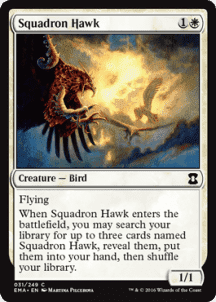 Squadron Hawk Foil - фото 31603