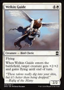 Welkin Guide - фото 31672