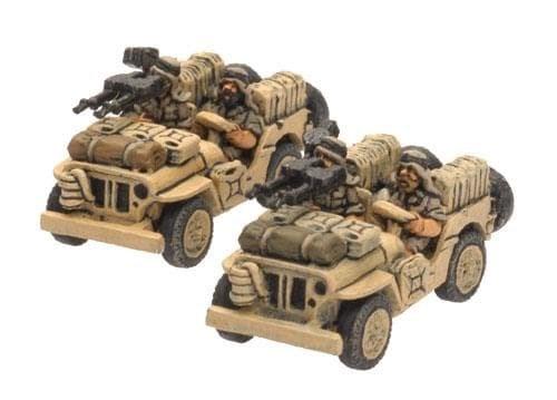 LRDG/SAS Jeep - фото 31991