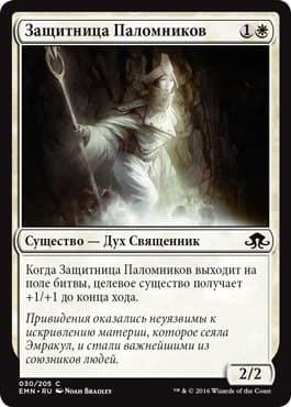 Защитница Паломников - фото 33707