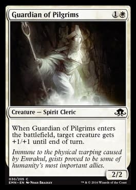 Guardian of Pilgrims - фото 33918