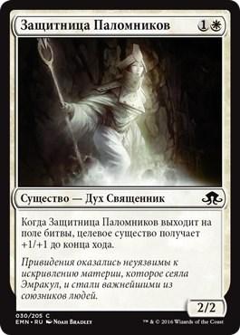 Защитница Паломников - фото 34076