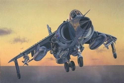 Купите Самолёт FRS. 1 SEA HARRIER  (1:72) в интернет-магазине «Лавка Орка». Доставка по РФ от 3 дней.