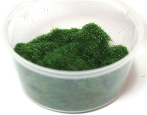 Модельная трава: Лесная - фото 73800