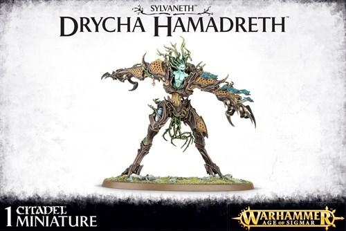 Sylvaneth Drycha Hamadreth - фото 94234