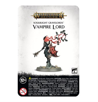 Soulblight Gravelords: Vampire Lord Age of Sigmar