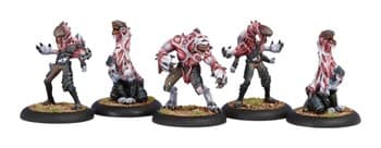 Legion of Everblight Incubi BOX