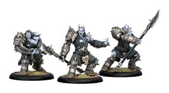 Legion of Everblight Warmonger Unit BOX*