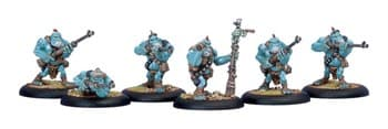 Trollblood Pyg Bushwackers Unit BOX