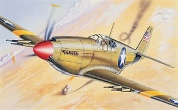 Самолет  P-51  MUSTANG (1:72)