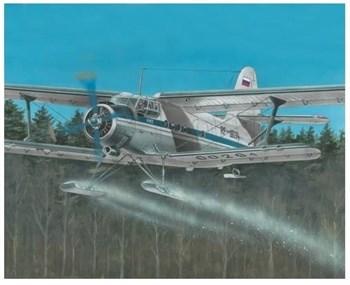 Многоцелевой самолет Ан-2 на лыжах (1:72)
