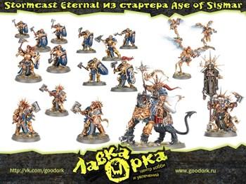 Stormcast Eternal из стартера Молот Войны: Эпоха Сигмара (Warhammer: Age of Sigmar)