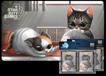 Комплект (Коврик + Протекторы): Kitten