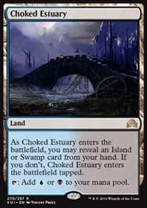 Choked Estuary
