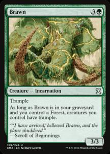 Brawn Foil