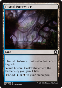 Dismal Backwater Foil