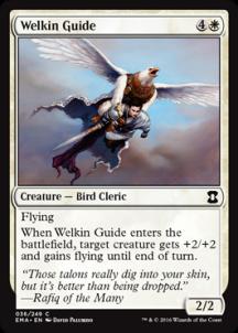 Welkin Guide Foil