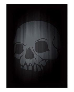 Протекторы Skull Double Matte