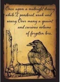 Протекторы Legion - Raven матовые
