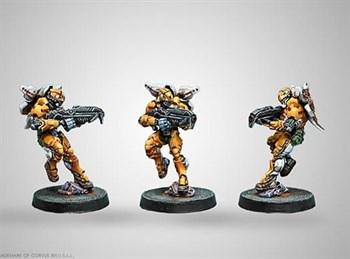 "Купите Tiger Soldier (Spitfire) в интернет-магазине ""Лавка Орка"". Доставка по РФ от 3 дней."