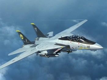 Купите Самолет  F-14D (1:144) в интернет-магазине «Лавка Орка». Доставка по РФ от 3 дней.
