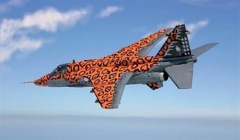 Купите Самолет Sepecat Jaguar GR.3 Big cat (1:72) в интернет-магазине «Лавка Орка». Доставка по РФ от 3 дней.