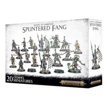 The Splintered Fang